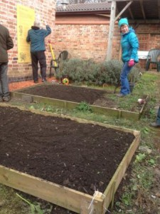 a raised bed cleared for planting
