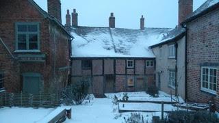 The garden under snow