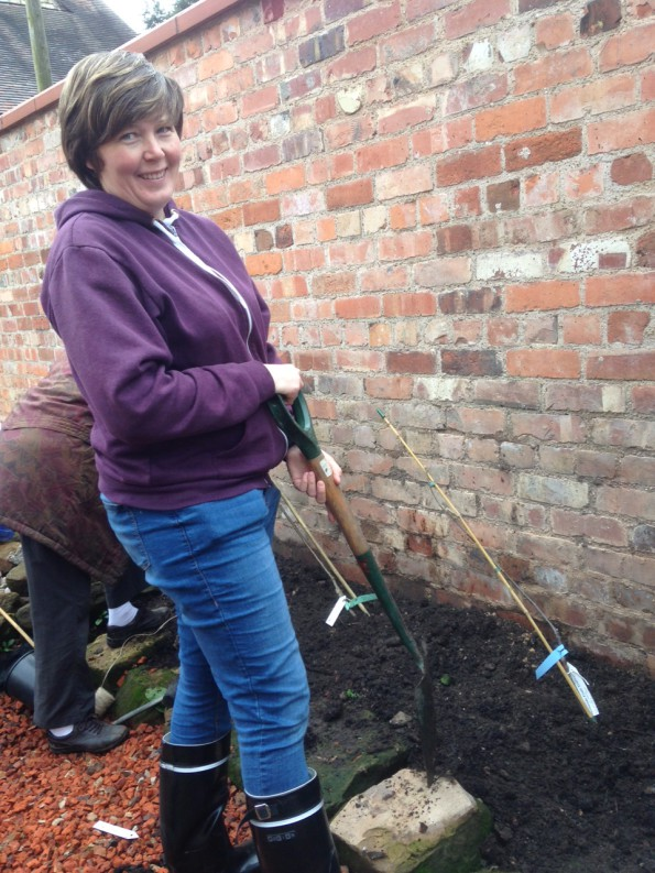 Tanja planting the Russet