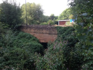 a sandstone bridge covered with greenry