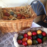 baskets of dyed eggs