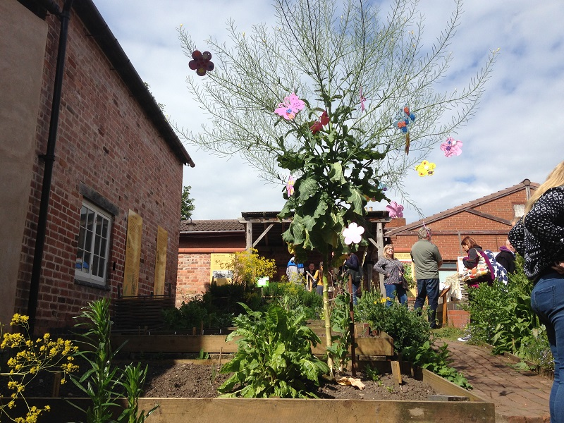 a cabbage grown to tree height decorated with paper flowers