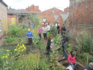 people through the garden