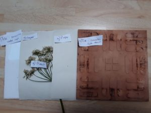 layers laid out - tiles, flowers, paper
