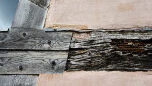 Old, weathered timber intersects with new timber